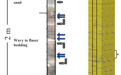 Petrophysical characterization of a heterolithic tidal reservoir interval using a process-based modelling tool